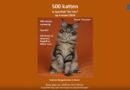 500 katten in de Trits
