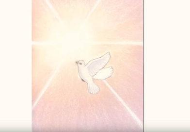 Kinderboek: Het witte duifje en het geheim van de zon.